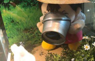 トトロの森1画像