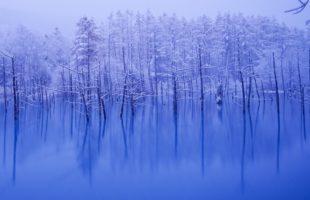 冬休み画像